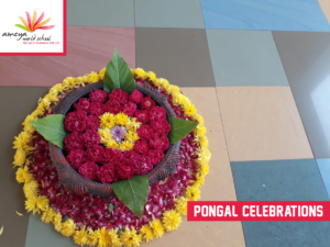 Ameya pongal celebration-1