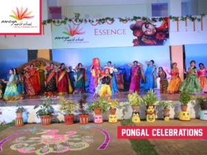 Ameya pongal celebration-3