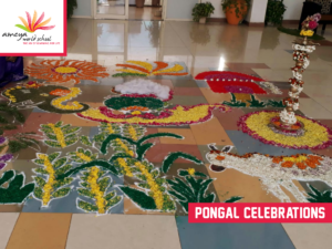 Ameya pongal celebration-4